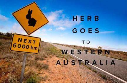 Herb Goes to WA